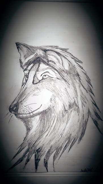 the-wolf-sketch
